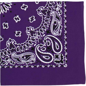 "Purple Trainmen Cotton Paisley Sport 22"" x 22"" Bandana Biker Headwrap"