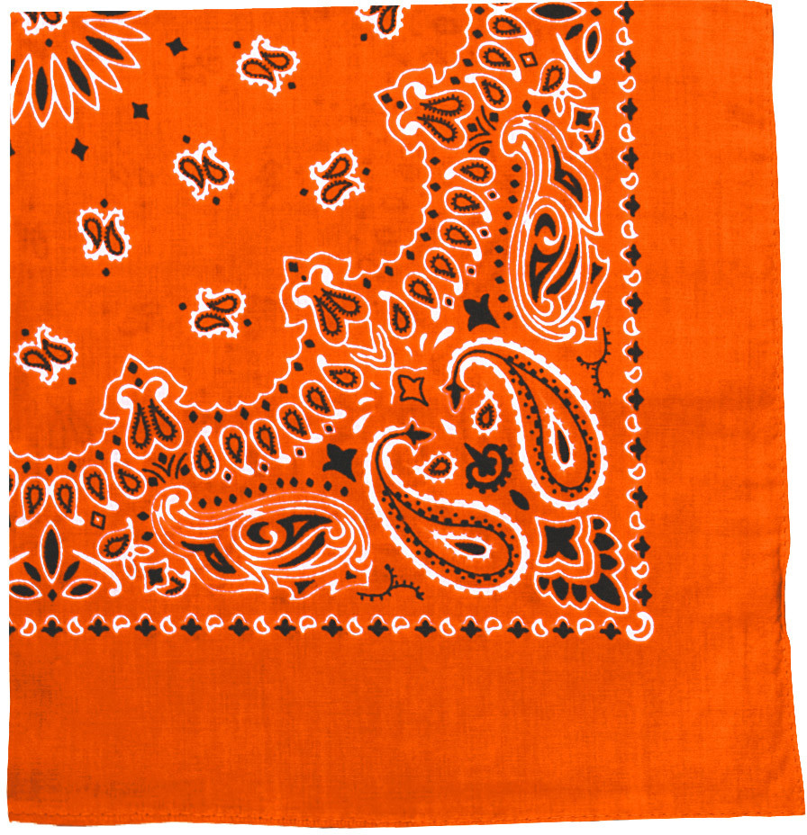 Orange Trainmen Cotton Paisley Sport 27