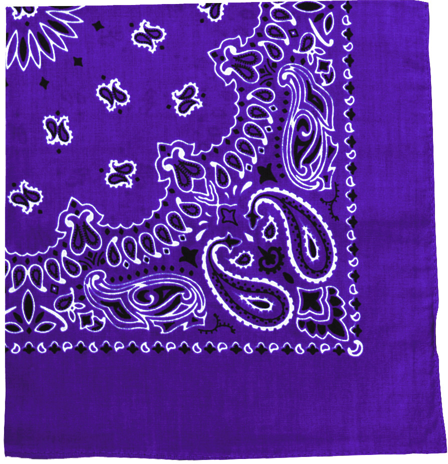 Purple Trainmen Cotton Paisley Sport 27