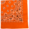 "Orange Trainmen Cotton Paisley Sport 27"" x 27"" Bandana Biker Headwrap"