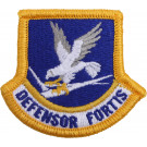 US Air Force Defensor Fortis Beret Military Flash Patch USA Made