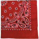 "Red Trainmen Cotton Paisley Sport 27"" x 27"" Bandana Biker Headwrap"
