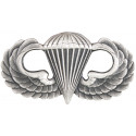 Parawing Insignia Pin