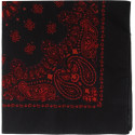 "Black & Red Trainmen Cotton Paisley Sport 22"" x 22"" Bandana Biker Headwrap"