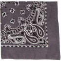 "Grey Trainmen Cotton Paisley Sport 22"" x 22"" Bandana Biker Headwrap"